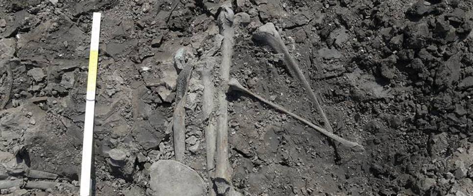 Skelettfund am Stuttgarter Hauptbahnhof