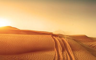 Überleben in der Wüste